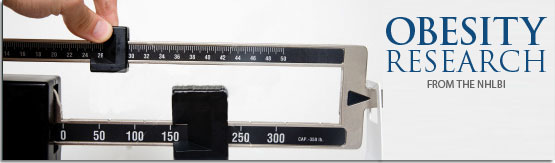 graphic banner of a weight scale