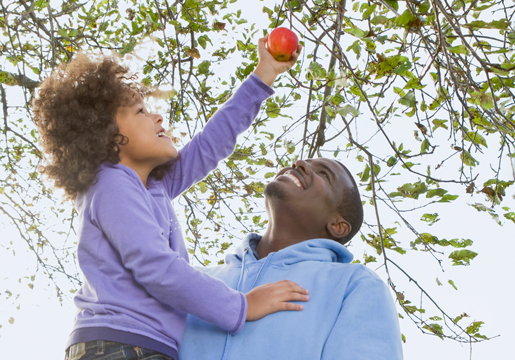 Dad lifts kid to pick apple