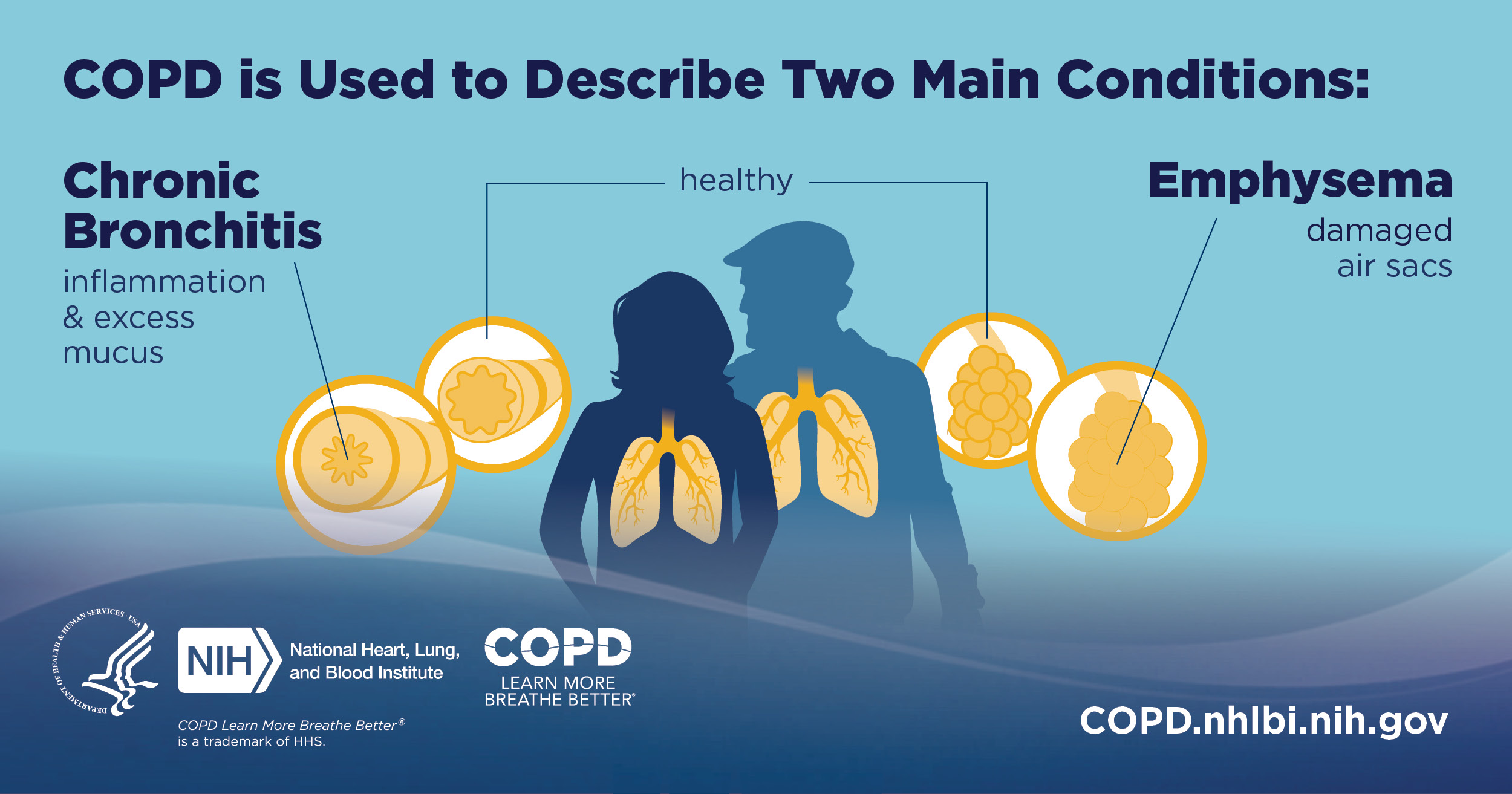 COPD is Used to Describe Two Main Conditions: Chronic Bronchitis (inflammation & excess mucus) Emphysema (damaged air sacs). COPD.nhlbi.nih.gov.