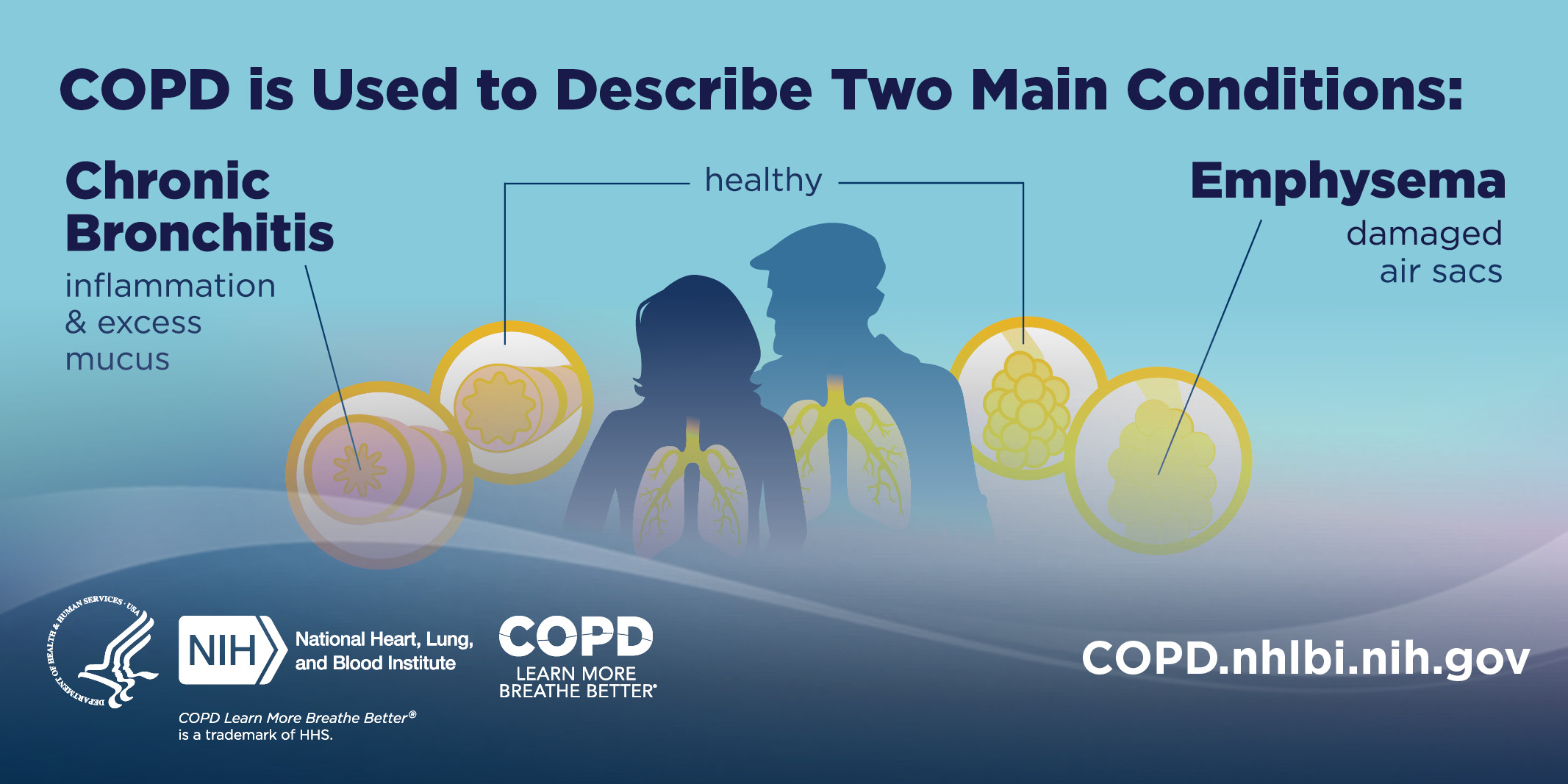 Image with text: COPD is Used to Describe Two Main Conditions: Chronic Bronchitis (inflammation & excess mucus) Emphysema (damaged air sacs). COPD.nhlbi.nih.gov.