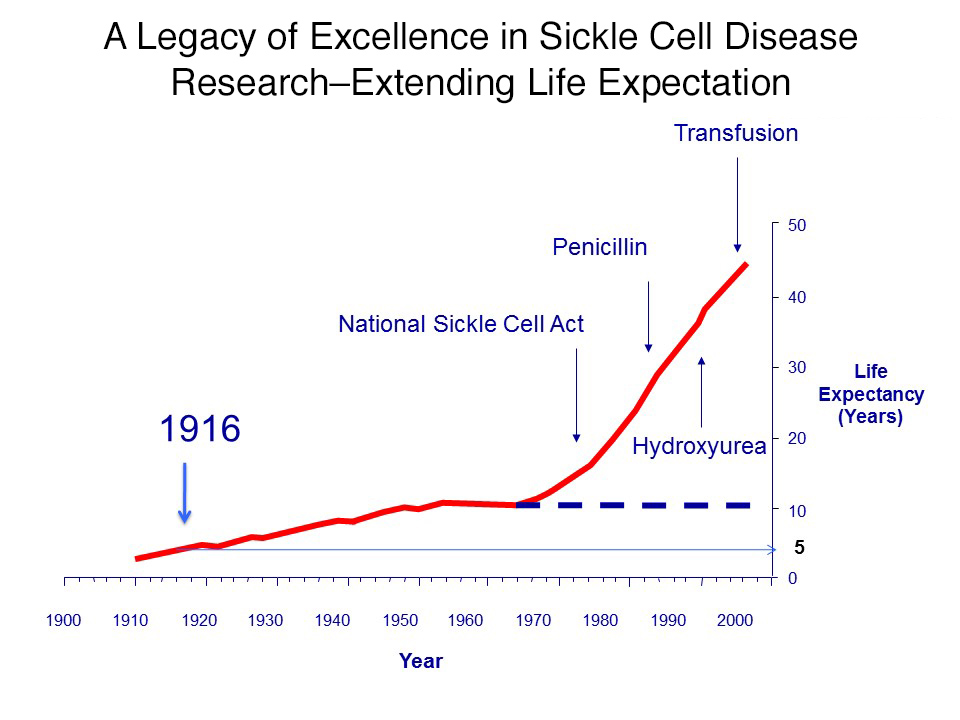 Legacy of Excellence in SCD Research