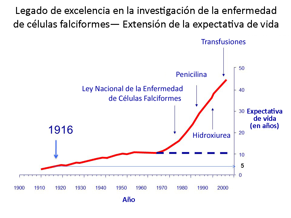 Spanish Legacy of Excellence in SCD Research