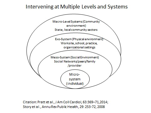 intervening and multiple levels and systems