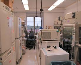 Our cell culture room