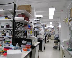 Our lab- one view