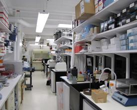 Our lab- another view