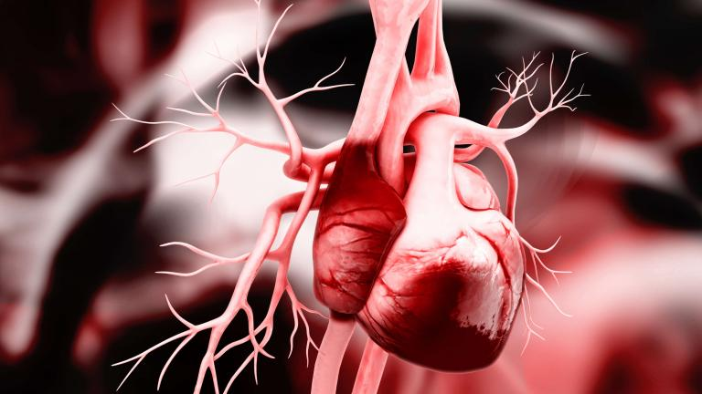 News On Heart Attack National Heart Lung And Blood Institute Nhlbi