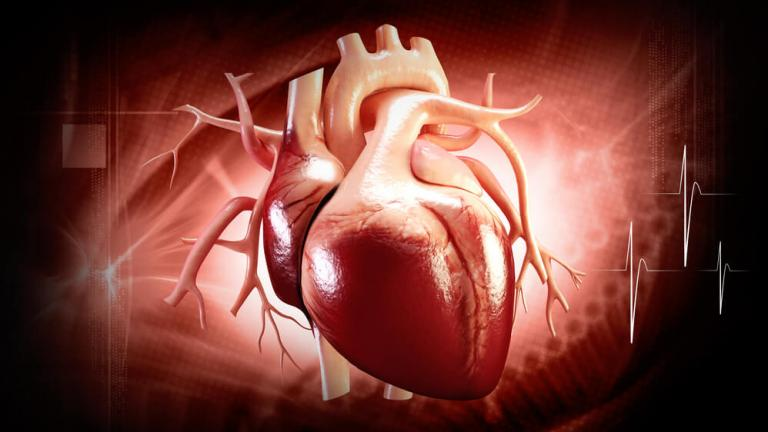 Cardiovascular Health Study (CHS) - datacatalog.med.nyu.edu