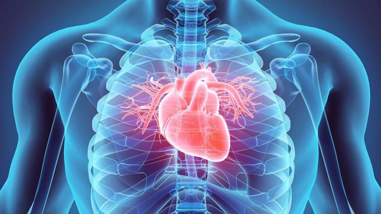 Toward regenerative medicine: Progress in turning damaged tissue