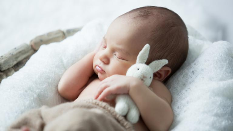 Baby sleeping with plush toy.