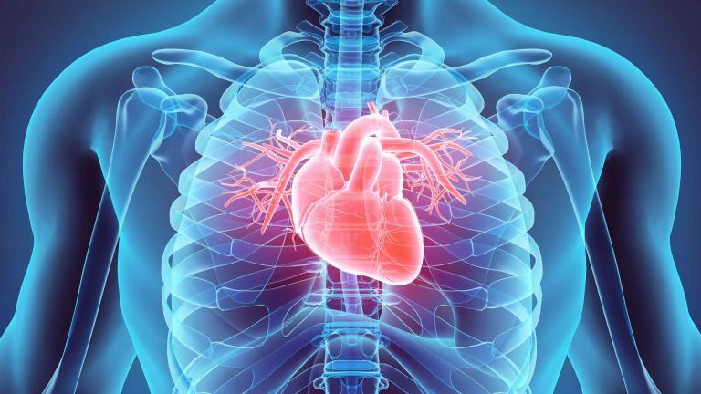 Conquering Cardiovascular Disease | NHLBI, NIH