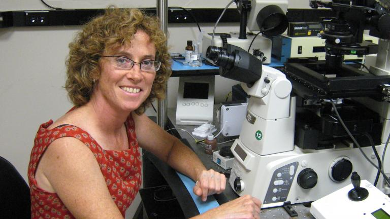 Scientist clare waterman working with microscope