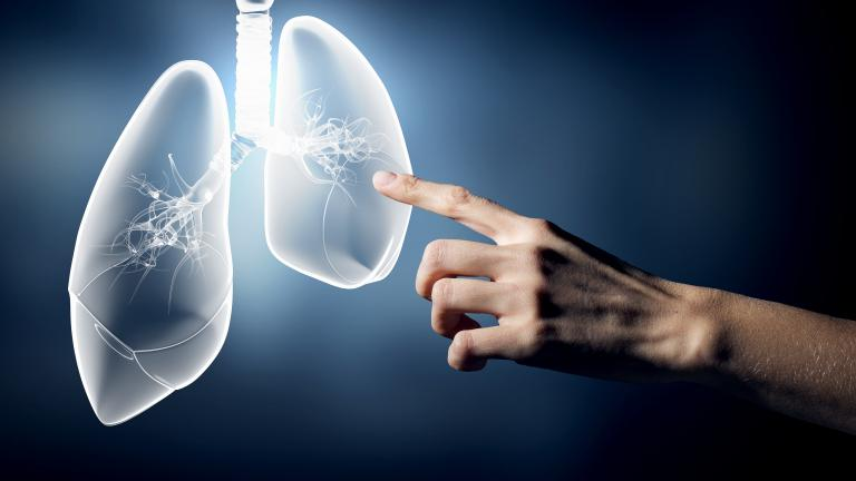 3D Illustration of lungs with a person's arm reaching out. Stock photo.