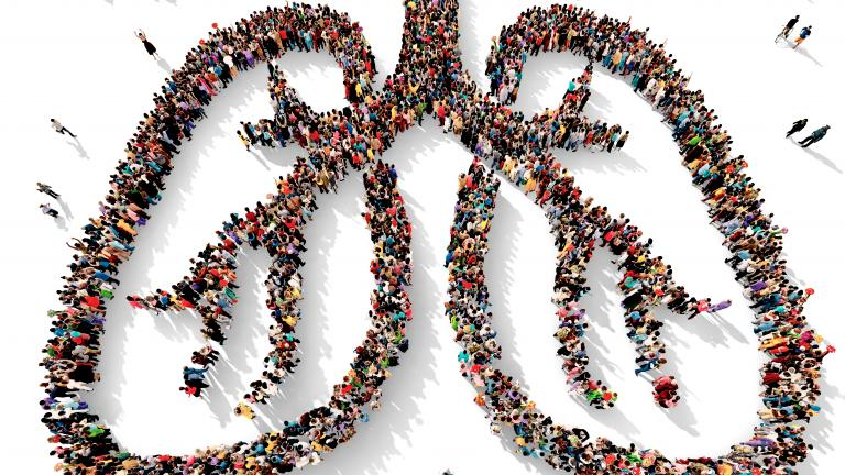 Large and diverse group of people seen from above gathered together in the shape of two lungs, 3d illustration