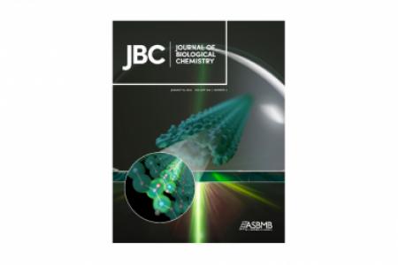 J. Biol. Chem. Cover