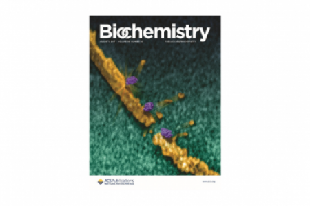 Journal Cover - Biochemistry