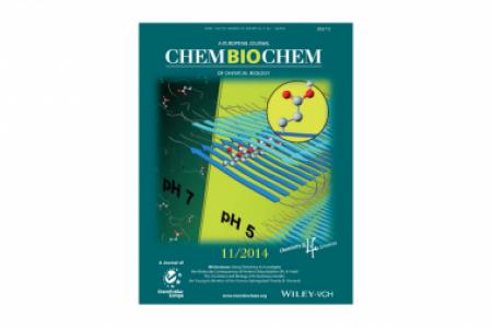 Journal Cover - Chem Bio Chem