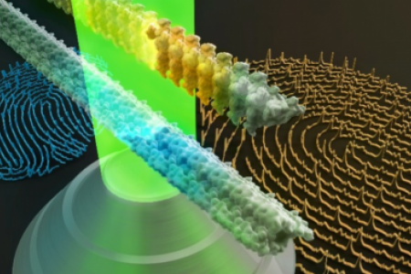 Raman fingerprints of amyloid structures