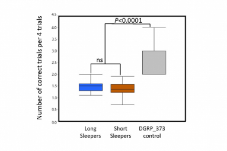 Memory defects in relation to sleep time